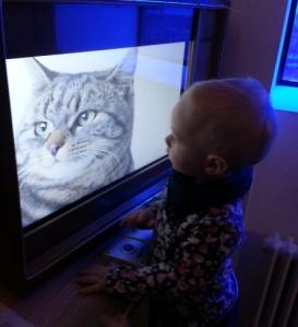 F und Katze